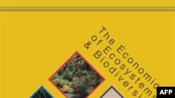 联合国环境规划署的报告封面