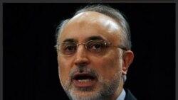 علی اکبر صالحی: انتظار نداشتیم اروپا تحت تاثیر سناریوی آمریکا قرار گیرد