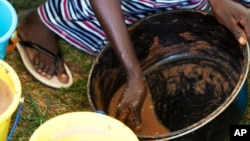 Le karité et la chenille associée à l'arbuste sont sources de richesse en Afrique de l'Ouest