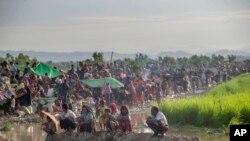 Pengungsi Muslim Rohingya yang baru tiba di Bangladesh beristirahat di sebuah lapangan terbuka. Mereka berkerumun karena tidak diperbolehkan memasuki kamp pengungsian oleh petugas perbatasan Bangladesh di Palong Khali, Bangladesh, 17 Oktober 2017.