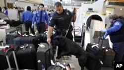LA 국제공항 검색대 모습