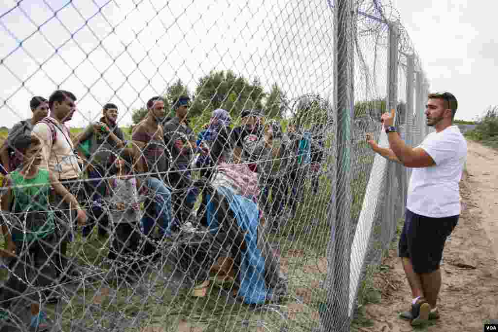 Desperate for answers, migrants on the Serbian side of the fence ask VOA's local Arabic language translator on the Hungarian side, where to go and what to do, Sept. 15, 2015. (Ayesha Tanzeem/VOA)