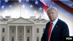Shugaban Amurka Mai Jiran Gado, Donald Trump