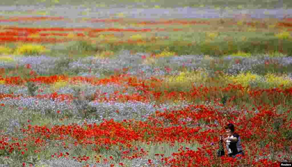 Mulher atravessando campo florido em Almaty, no Casaquistão.