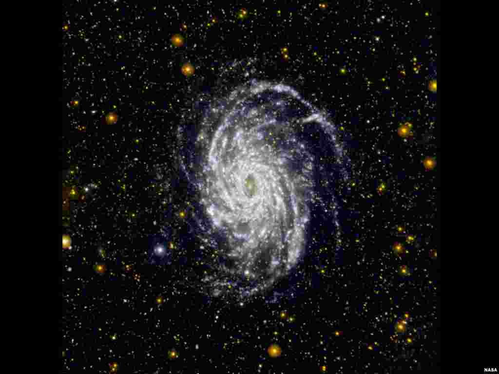 This image from NASA's Galaxy Evolution Explorer shows NGC 6744, one of the galaxies most similar to our Milky Way in the local universe. The galaxy is situated in the constellation of Pavo at a distance of about 30 million light-years. (NASA/JPL-Caltech)