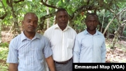 Malgré leur participation à l'école paysanne et le cacao de qualité qu'ils produisent, ces cacaoculteurs ne se réjouissent pas du fruit de leur labeur au Cameroun, le 25 mai 2017. (VOA/Emmanuel Ntap)