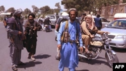 Combatentes Talibã