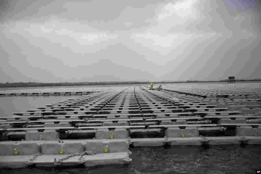 """伦敦泰晤士河附近的""""伊丽莎白二世水库""""上漂浮的太阳能电池板,上面有人工作(2016年3月21日)。"""