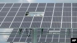 中國的太陽能板