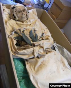 Mummified remains of Terézia Hausmann. (Gemma Kay)