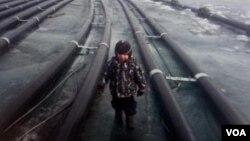 在俄罗斯社交网络上流传的照片显示,中国投资兴建的瓶装水厂已在贝加尔湖上架设了许多抽水管道。