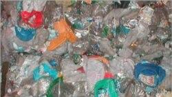 تولید پلاستیک از پَرِ مرغداری ها