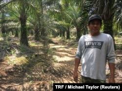 Smallholder farmer Isnin Kasno on his palm oil plantation near Johor, Malaysia, March 22, 2018.