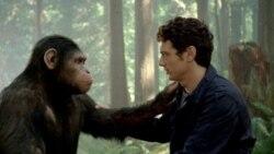 نقد فیلم: ظهور سیاره میمون ها