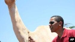 2006年8月27日参议员奥巴马手拉骆驼在肯尼亚东北部