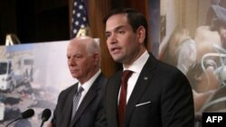 Sen. Marco Rubio (R-Florida), right, at a press conference at the US Capitol, April 5, 2017 in Washington, DC. (Win McNamee/Getty Images/AFP)