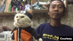Fredi Lugina mengaku awalnya iseng dengan pakaian kucing, ternyata menguntungkan. (koleksi pribadi)