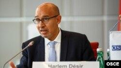 Harlem Dezir, ATƏT-in Media Azadlıqları üzrə nümayəndəsi