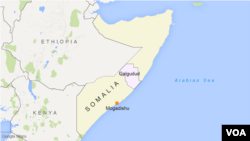 The Somalia national army reports it killed eight Al-Shabab militants in an operation in the Galgaduud region.