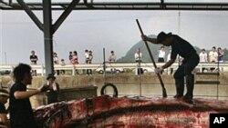 잡은 고래를 분해하는 일본 어부들