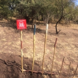 Report On Villagers' Demining Activities Filed By Patricia Mudadigwa