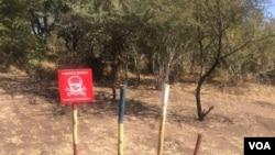 Demining in process in Mukumbura communal lands.