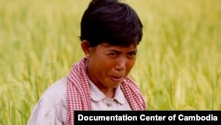 Taing Kim came forward with her story in 2003, when she became one of the first women to speak publicly about her experience, which was also covered in a 2005 television documentary filmed by DC-Cam in the rice field. (Courtesy photo of DC-Cam)