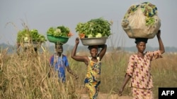 FILE - Women come back from the fields to sell vegetables at a market near the displacement camp close to the airport in Bangui.