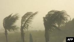 Bão Katrina đã thổi vào vùng duyên hải Vịnh Mexico hôm 29 tháng 8 năm 2005, khi bão Rita xảy ra không tới 1 tháng sau đó