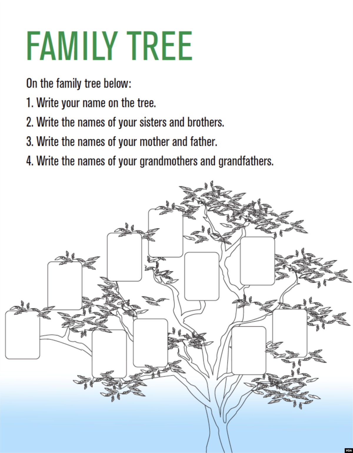 Family Tree Poster for Women Teaching Women English Unit 1
