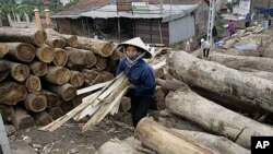 A female worker walks among lumber at a private wood processing workshop in Hanoi, January 26, 2006 (file photo)
