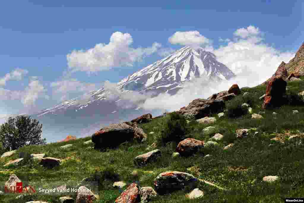 دامنه های البرز عکس: سید وحید حسینی
