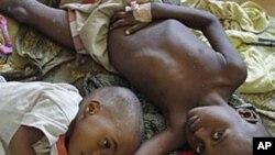Les pesticides sont particulièrement dangereux pour les enfants