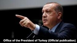 د ترکیې ولسمشر طیب اردوغان