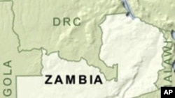 Irrigation Helps Zambian Farmers Boost Food Production