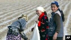 Dalada ishlayotgan ayollar, Andijon, 2005-yil, 6-aprel
