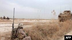 Binh sĩ Afghanistan và quốc tế ở tỉnh Helmand tiếp tục thu hẹp các chiến dịch chống các phần tử nổi dậy ở thị trấn Marjah