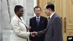 악수를 나누는 발레리 아모스 OCHA 국장(왼쪽)과 김영남 북한 최고인민회의 상임위원장(오른쪽)