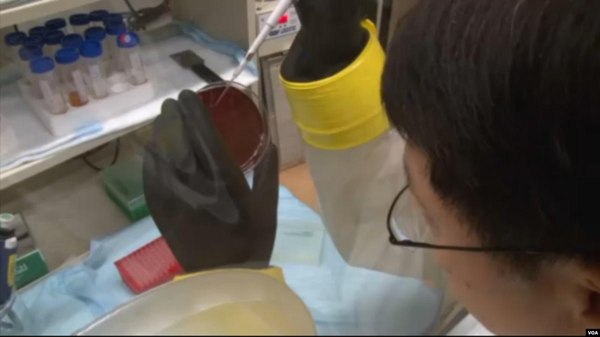 تشخیص هشت نوع سرطان با آزمایش خون