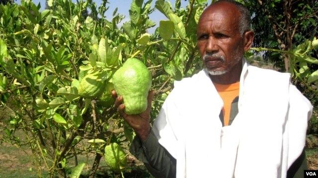 Tigray-Farmer-Researcher