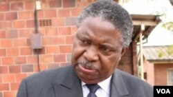 Vice President Phelekezela Mphoko.