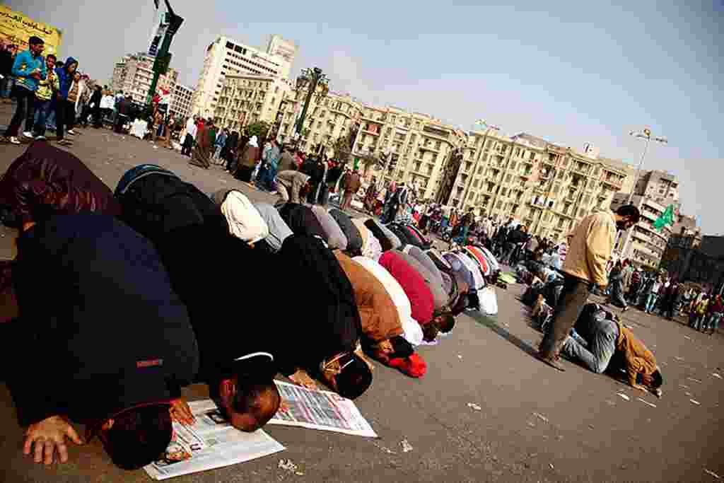 VOA - Manifestantes rezando en la Plaza Tahrir de El Cairo.