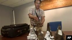Seorang petugas bea cukai Thailand menunjukkan cula badak yang disita dari bagasi seorang penumpang di bandara Suvarnabhumi di Bangkok, Thailand, Sabtu (22/6).