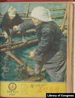 미 의회도서관 한국과가 디지털화 작업을 마치고 공개한 북한 잡지 '조선수산' 1960년 4호 표지.