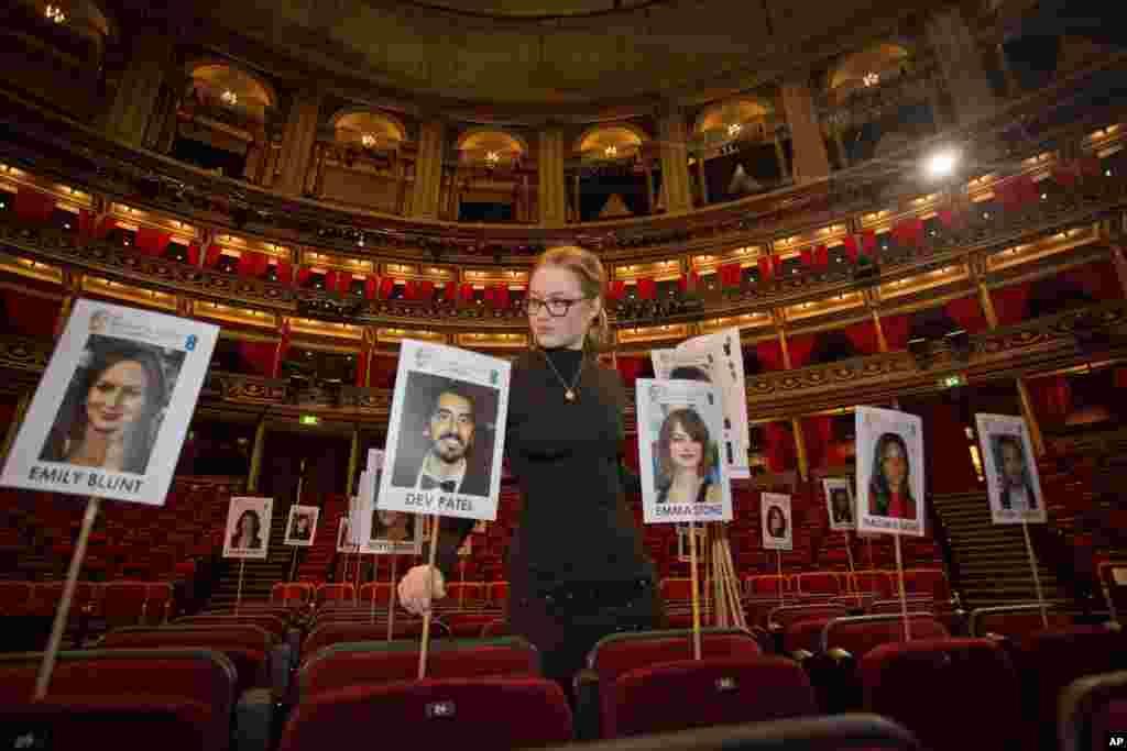 Londra'da Royal Albert Salonu'nda düzenlenecek olan Britanya Akademi Film Ödülleri öncesi yapılan hazırlıklardan bir kare.