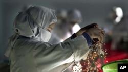 Pekerja perempuan di pabrik kismis Hajii Sher Mohamad dekat Kandahar, Afghanistan.