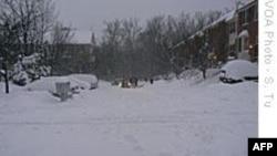 Bão tuyết gây thiệt hại nặng cho kinh tế nước Mỹ