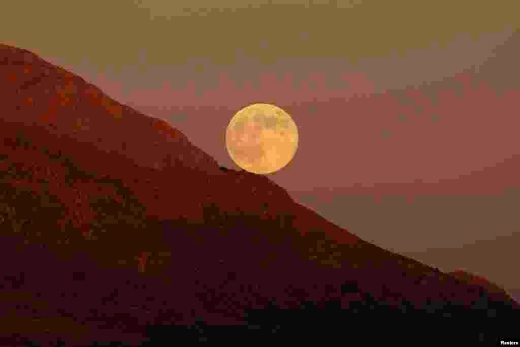 The supermoon rises as it is pictured from the Sierra de las Nieves (Mountain range of Snows) nature park and biosphere reserve between El Burgo and Ronda, near Malaga, southern Spain, Aug. 10, 2014.