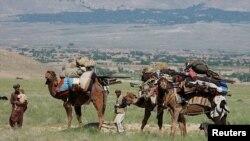 Afghanistan Nomads