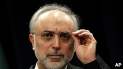 伊朗外交部长萨利希(资料照)